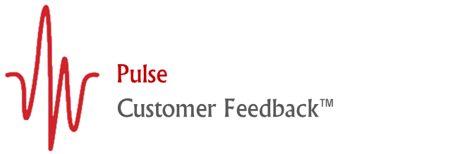 Pulse - Customer Feedback Surveys